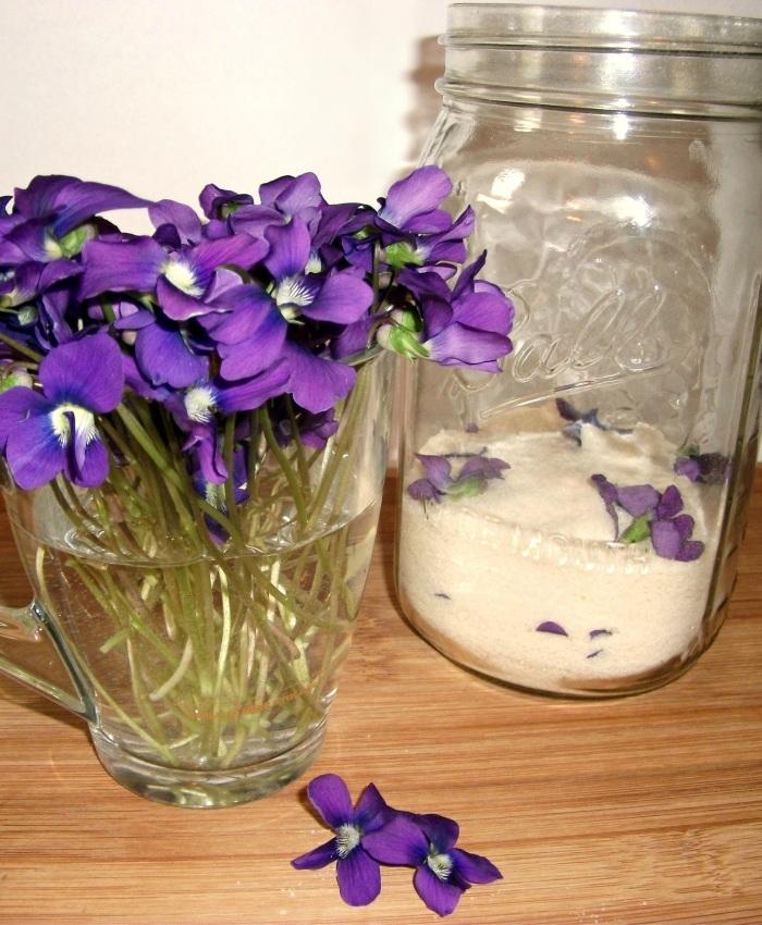 violets-edit-8